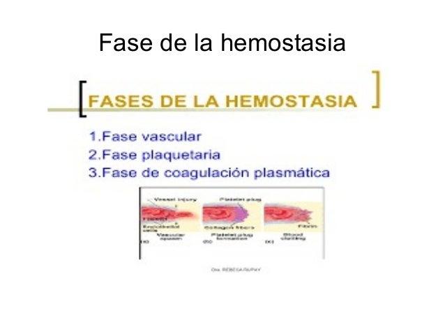 Los libros de texto de la cirugía vascular