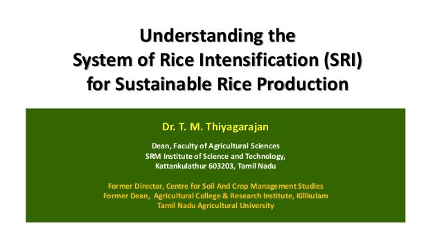 Understanding the System of Rice Intensification (SRI) for Sustainable Rice Production Dr. T. M. Thiyagarajan Dean, Facult...