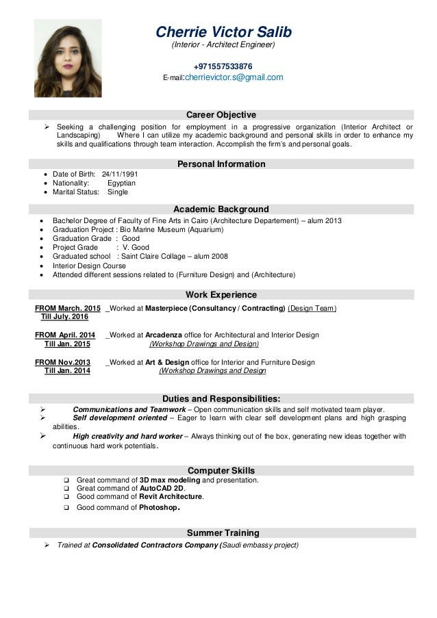 Resume Statements Examples Cool For Customer Service
