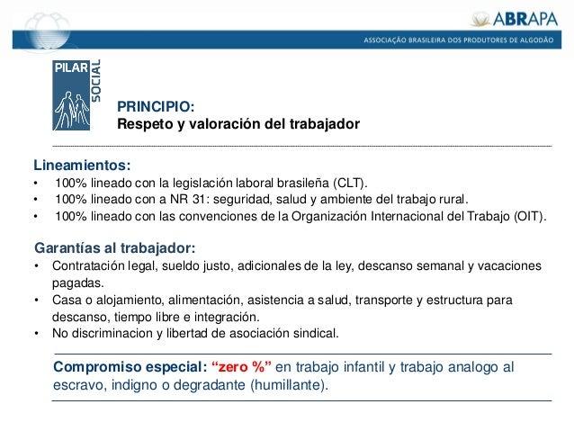 Lineamientos: • 100% lineado con la legislación laboral brasileña (CLT). • 100% lineado con a NR 31: seguridad, salud y am...