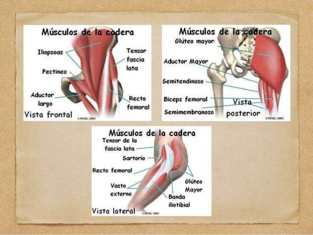 18 bursitis trocantérica