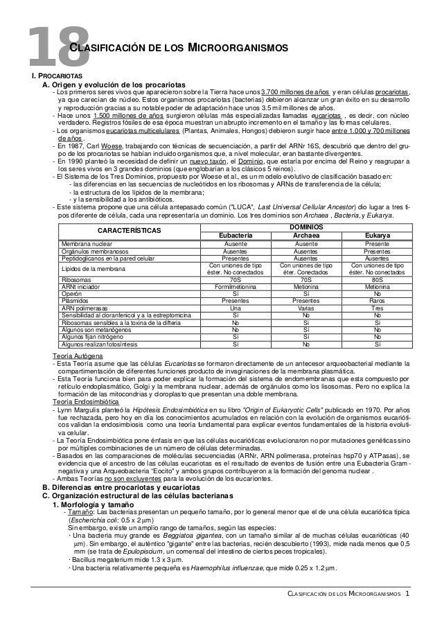 CLASIFICACIÓN DE LOS MICROORGANISMOS 1 18CLASIFICACIÓN DE LOS MICROORGANISMOS I. PROCARIOTAS A. Origen y evolución de los ...