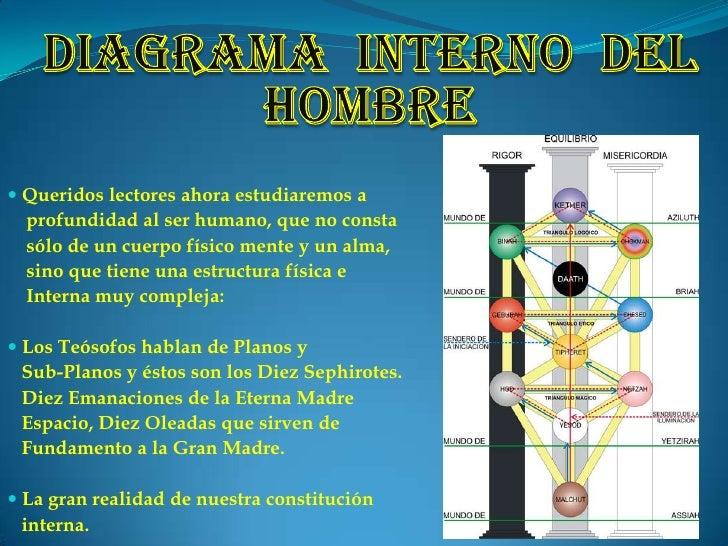 18 diagrama interno del hombre...