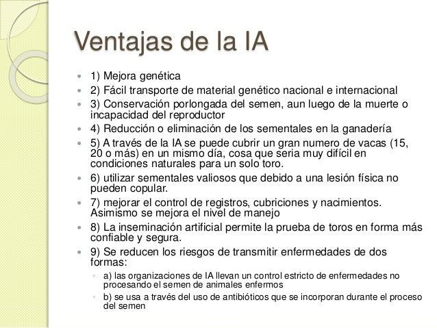 Inseminacin Artificial En Bovinos Pgina 2 Inseminacion