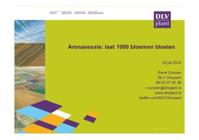 © DLV Plant© DLV Plant© DLV Plant© DLV Plant Arenasessie: laat 1000 bloemen bloeien 18 juli 2013 René Corsten DLV Chrysant...
