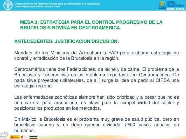 MESA 3: ESTRATEGIA PARA EL CONTROL PROGRESIVO DE LA BRUCELOSIS BOVINA EN CENTROAMERICA. ANTECEDENTES/ JUSTIFICACION/DISCUS...