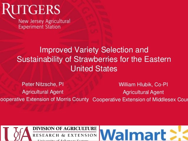 Improved Variety Selection and Sustainability of Strawberries for the Eastern United States Peter Nitzsche, PI Agricultura...