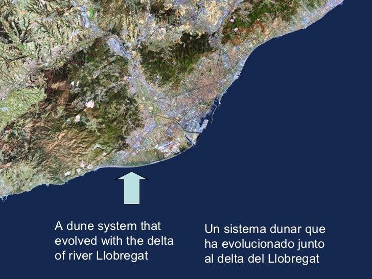 Las dunas de Gavà, 18 años de transformación Slide 2
