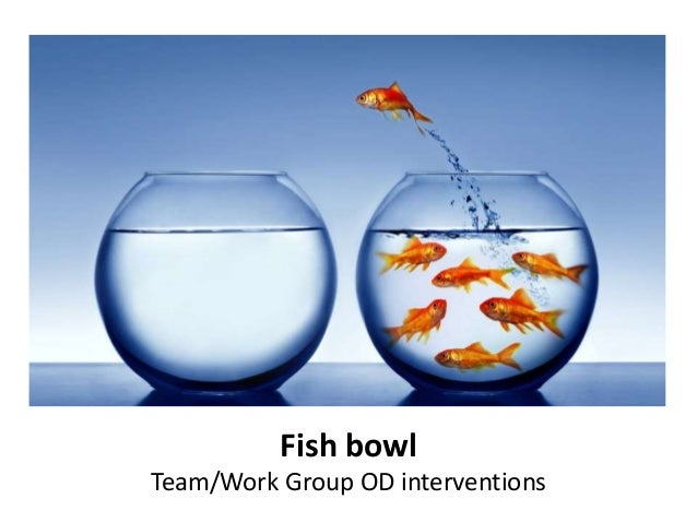 Fish bowl Team/Work Group OD interventions