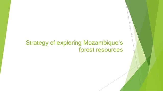 Strategy of exploring Mozambique's forest resources