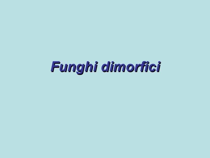 Funghi dimorfici