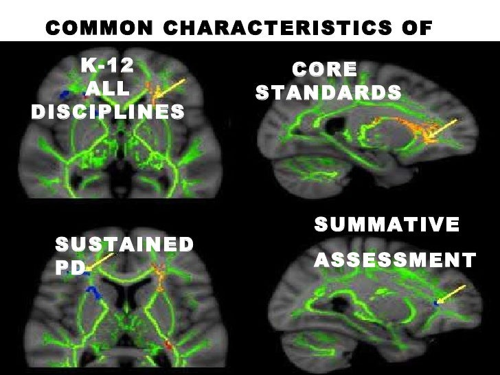 COMMON CHARACTERISTICS OF PSTs K-12  ALL DISCIPLINES SUSTAINED PD CORE  STANDARDS SUMMATIVE  ASSESSMENT