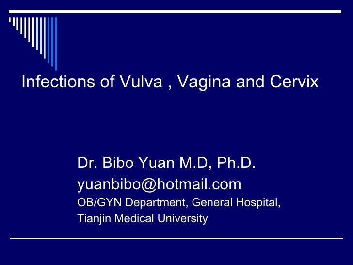 Infections of Vulva , Vagina and Cervix <ul><li>Dr. Bibo Yuan M.D, Ph.D. </li></ul><ul><li>[email_address] </li></ul><ul><...