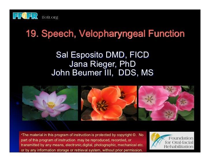 19. Speech, Velopharyngeal Function                   Sal Esposito DMD, FICD                      Jana Rieger, PhD        ...