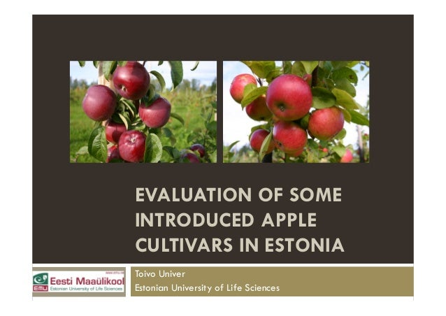 EVALUATION OF SOME INTRODUCED APPLE CULTIVARS IN ESTONIA Toivo Univer Estonian University of Life Sciences