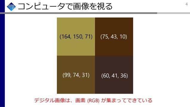 (164, 150, 71) (75, 43, 10) (99, 74, 31) (60, 41, 36) コンピュータで画像を視る デジタル画像は、画素 (RGB) が集まってできている 4