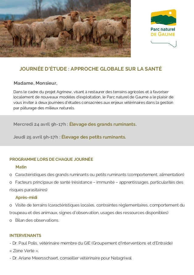 PROGRAMME LORS DE CHAQUE JOURNÉE Matin o Caractéristiques des grands ruminantsou petits ruminants (comportement, alimen...