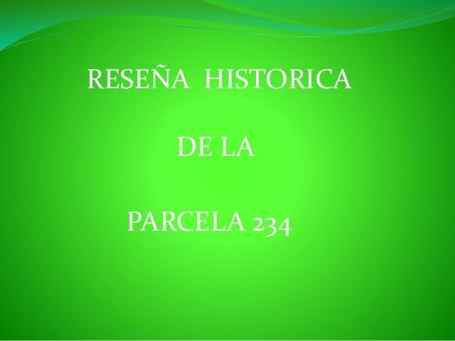 RESE�A HISTORICA DE LA PARCELA 234
