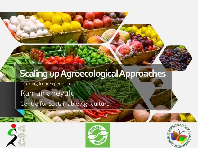 ScalingupAgroecologicalApproaches Learning from Experiences Ramanjaneyulu Centre for Sustainable Agriculture