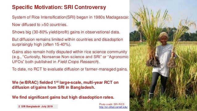 1907 - The Effects of Exposure Intensity on Technology Adoption and Gains: Experimental Evidence from Bangladesh on the System of Rice Intensification Slide 2