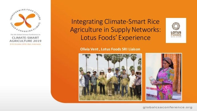 Integrating Climate-Smart Rice Agriculture in SupplyNetworks: Lotus Foods' Experience Olivia Vent , Lotus Foods SRI Liaison