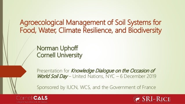 Agroecological Management of Soil Systems for Food, Water, Climate Resilience, and Biodiversity Norman Uphoff Cornell Univ...