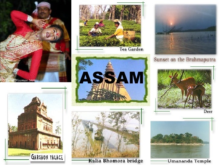 Essay on tourism and assam