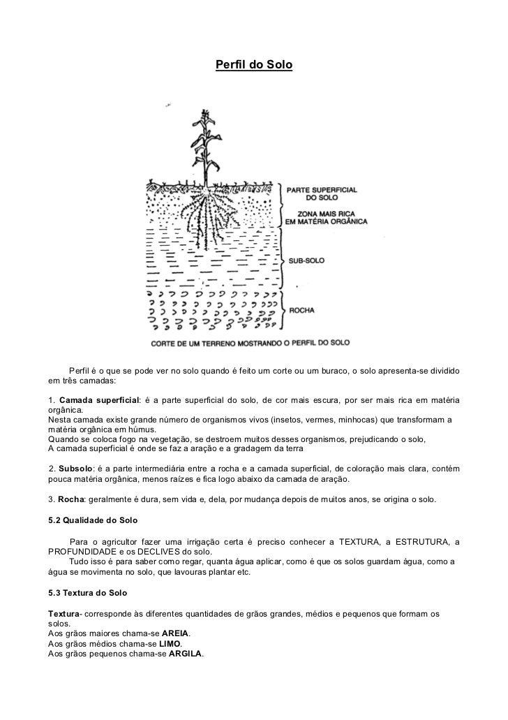 Perfil do Solo          Perfil é o que se pode ver no solo quando é feito um corte ou um buraco, o solo apresenta-se divid...
