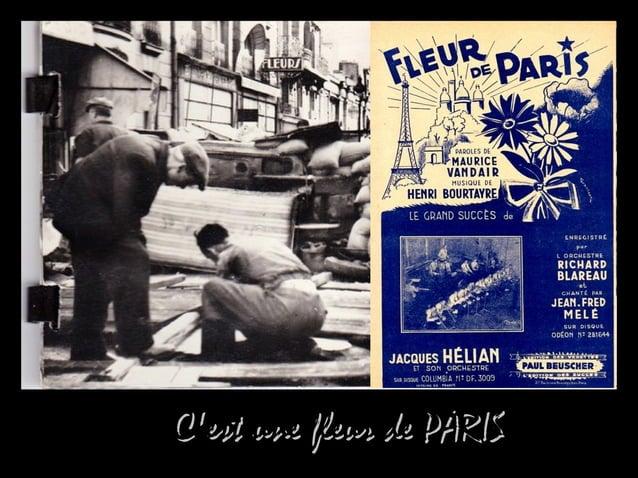 C'est une fleur de PARISC'est une fleur de PARIS