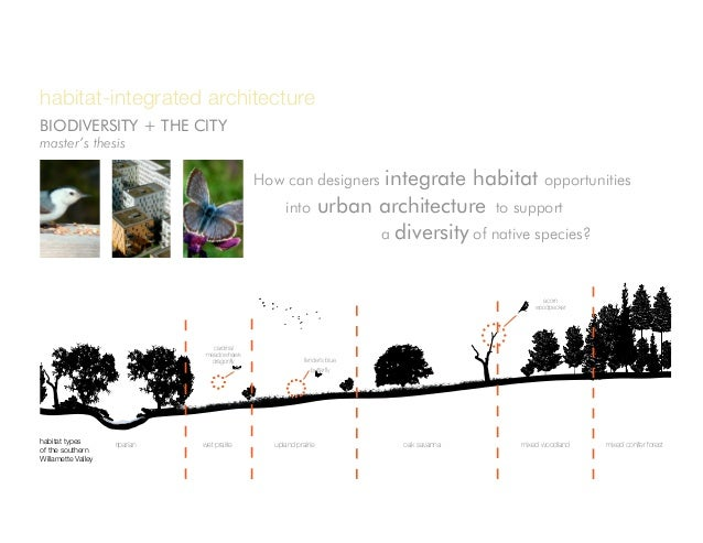 How can designers integrate habitat opportunities into urban architecture to support a diversity of native species? h...