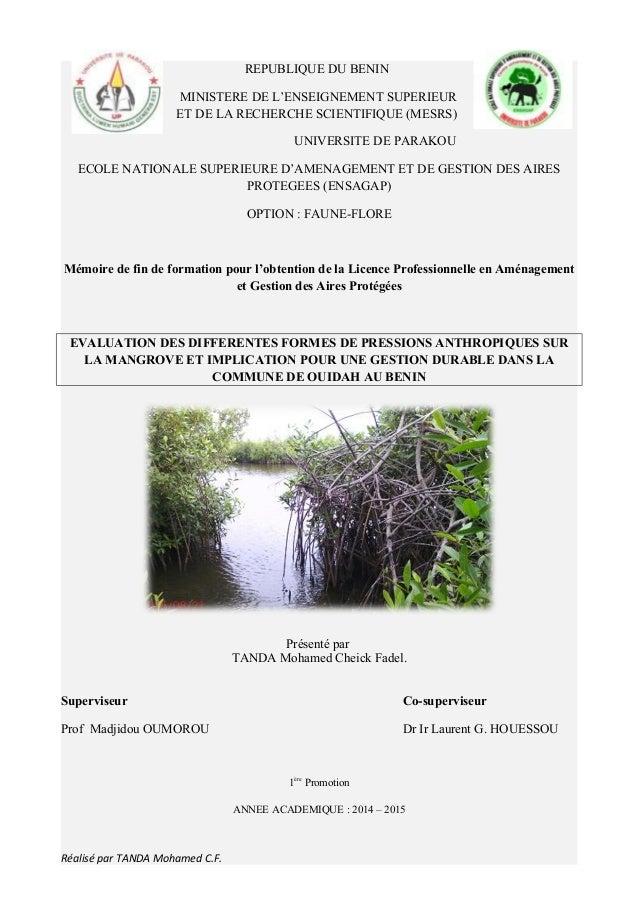REPUBLIQUE DU BENIN MINISTERE DE L'ENSEIGNEMENT SUPERIEUR ET DE LA RECHERCHE SCIENTIFIQUE (MESRS) UNIVERSITE DE PARAKOU EC...