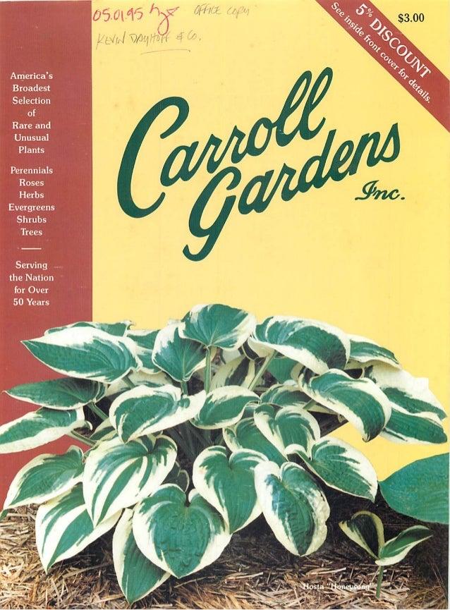 March 1994 Carroll Gardens Perennial Mail Order Catalogue