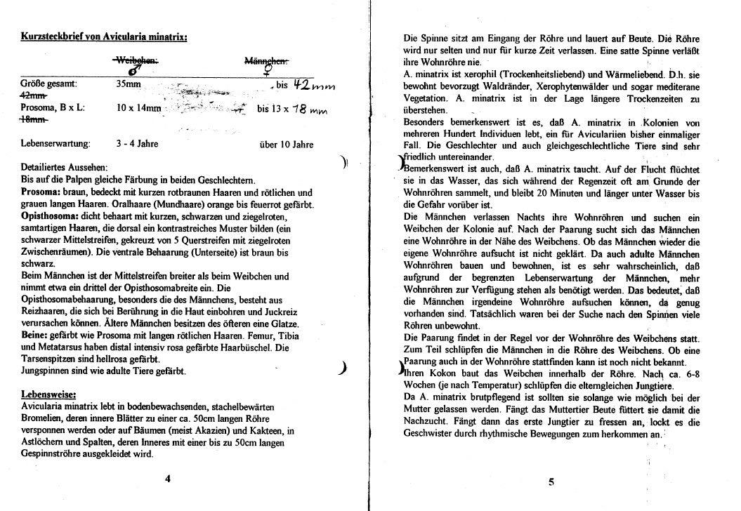 DeArGe Mitteilungen 2/1999 Slide 3