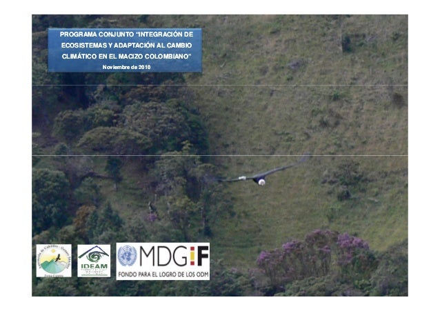 """PROGRAMA CONJUNTO """"INTEGRACIÓN DE ECOSISTEMAS Y ADAPTACIÓN AL CAMBIO CLIMÁTICO EN EL MACIZO COLOMBIANO"""" Noviembre de 2010"""
