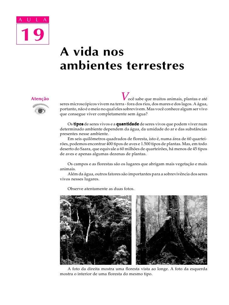 A UA U L A      L A      19 19               A vida nos               ambientes terrestres      Atenção                   ...
