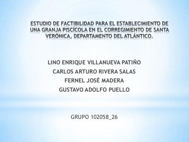 LINO ENRIQUE VILLANUEVA PATIÑO  CARLOS ARTURO RIVERA SALAS FERNEL JOSÈ MADERA GUSTAVO ADOLFO PUELLO  GRUPO 102058_26