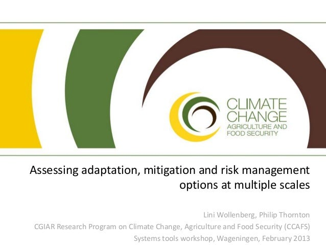 Assessing adaptation, mitigation and risk management                             options at multiple scales               ...