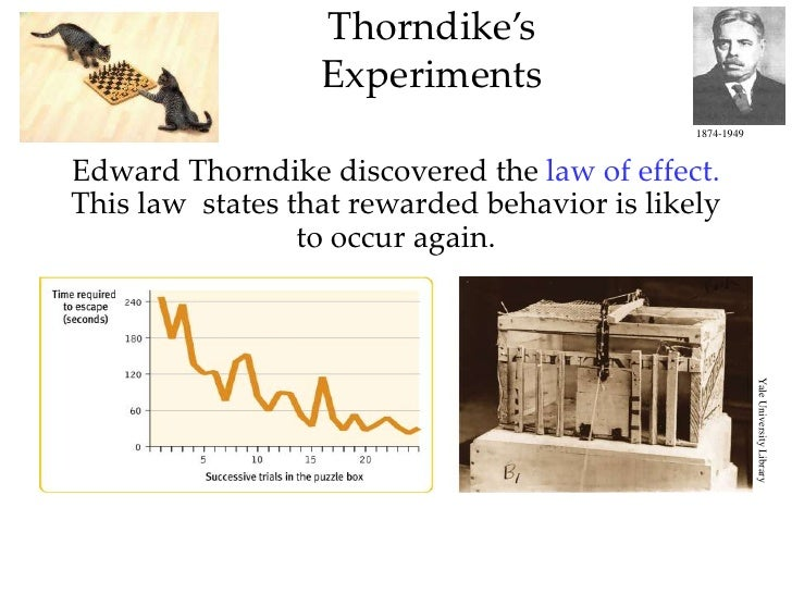 discussion of thorndike laws 1 2 Law of exercise-- created using powtoon  thorndike laws of learning - duration:  round table discussion saturday secret space program conference,.