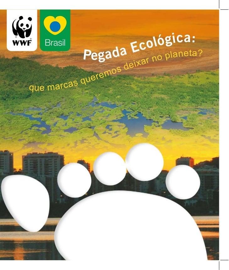 EXPEDIENTE WWF-Brasil Secretária Geral: Denise Hamú Coordenação do Programa de Educação Ambiental: Irineu Tamaio Coordenaç...