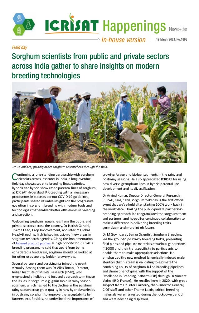 Newsletter Happenings In-house version 19 March 2021, No.1898 Field day Sorghum scientists from public and private sectors...