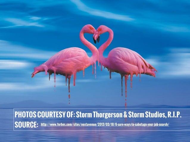 PHOTOSCOURTESYOF:StormThorgerson&StormStudios,R.I.P. SOURCE: http://www.forbes.com/sites/nextavenue/2013/03/18/6-sure-ways...