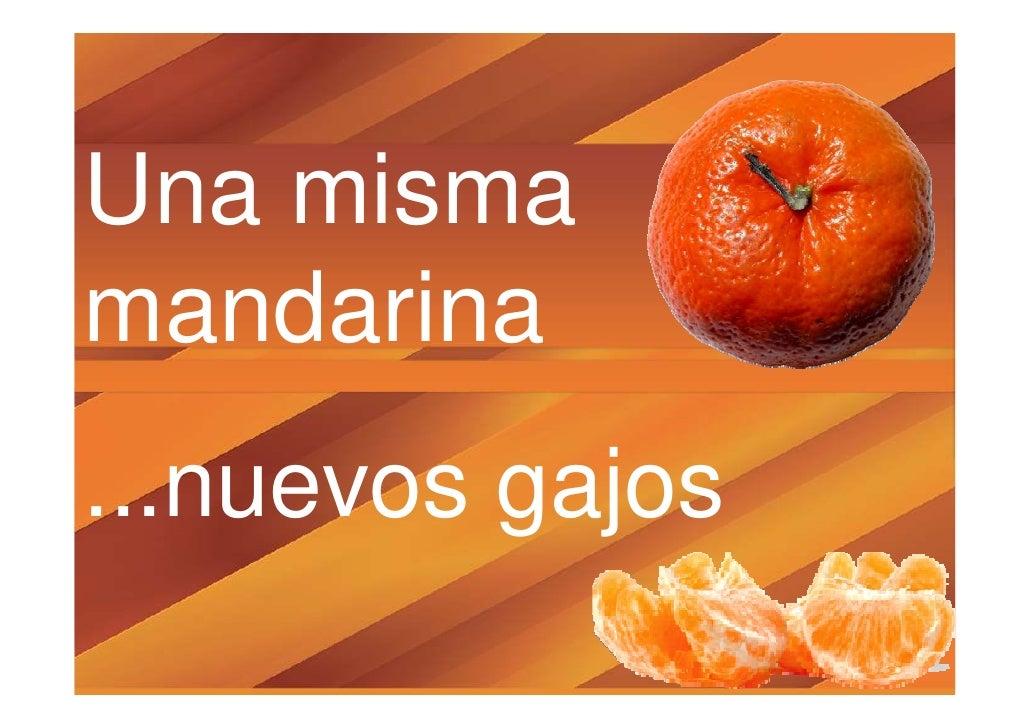 19 una misma mandarina, nuevos gajos luis woldenberg nodo