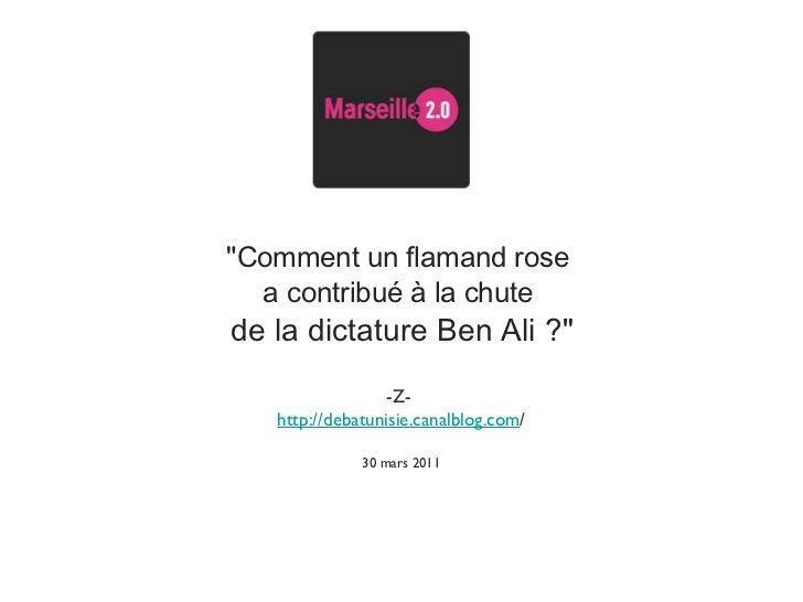 """""""Comment un flamand rose  a contribué à la chute  de la dictature Ben Ali ?"""" -Z-  http://debatunisie.canalblog.c..."""