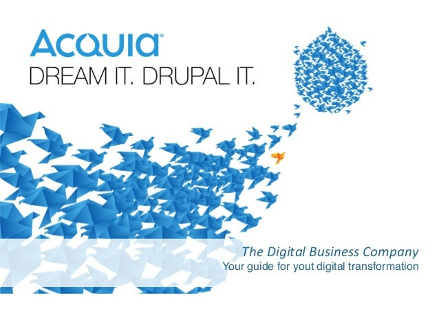 The  Digital  Business  Company   Your guide for yout digital transformation!