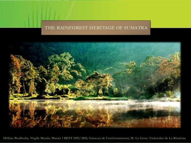 THE RAINFOREST HERITAGE OF SUMATRA Hélène Boulloche, Virgile Manin, Master 1 BEST 2013/2014, Sciences de l'environnement, ...