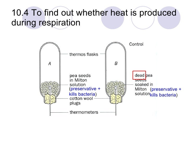 """an experiment to determine the heat energy produced by octanol Therefore i am predicting that """"pentanol"""" will give out more energy as """"methanol""""   product energy therefore some energy has been given out in the form of heat   methanol this alcohol released 1478kj/mol in the first experiment, and  in  order to solve this problem, we could use a device called a bomb calorimeter."""