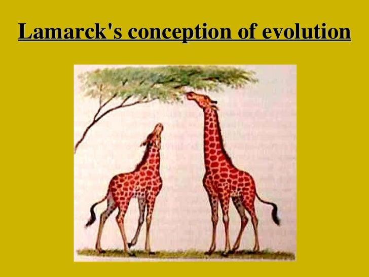 Pre Ib Biology  Evolution