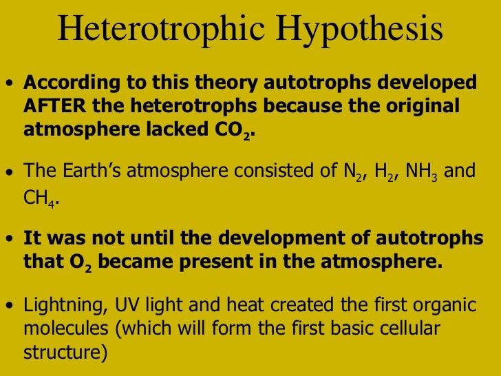 heterotroph hypothesis