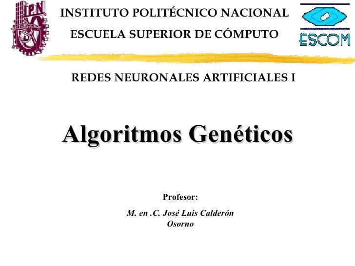 INSTITUTO POLITÉCNICO NACIONAL ESCUELA SUPERIOR DE CÓMPUTO Profesor: M. en .C. José Luis Calderón Osorno Algoritmos Genéti...