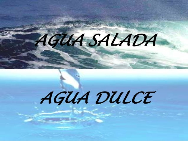 https://image.slidesharecdn.com/1aguadulceyaguasalada-130114122108-phpapp01/95/1-agua-dulce-y-agua-salada-1-638.jpg?cb=1358166112
